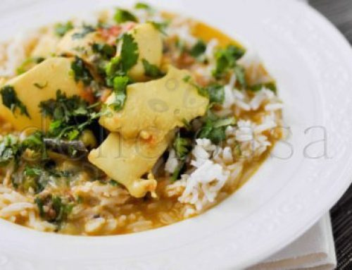Curry de calamari